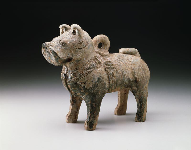 Chinese Mastiff (AIC 1950.1630)