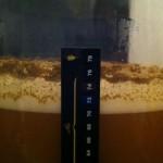 Chili Beer 2