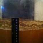 Chili Beer 4