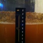 Chili Beer 6