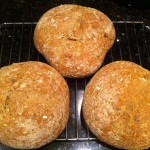 Tilted Jaw IPA Beer Bread
