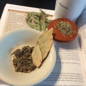 Gruit herbs - rosemary, myrtle, laurel, mugwort
