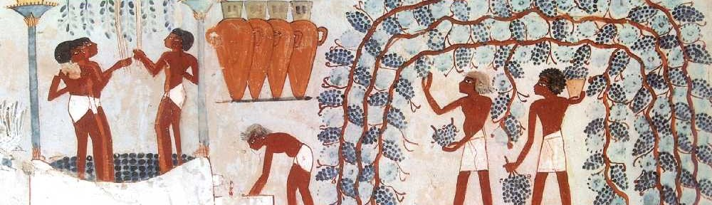 Harvesting Grapes, Tomb of Nakht